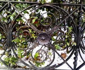 pretty fence 1