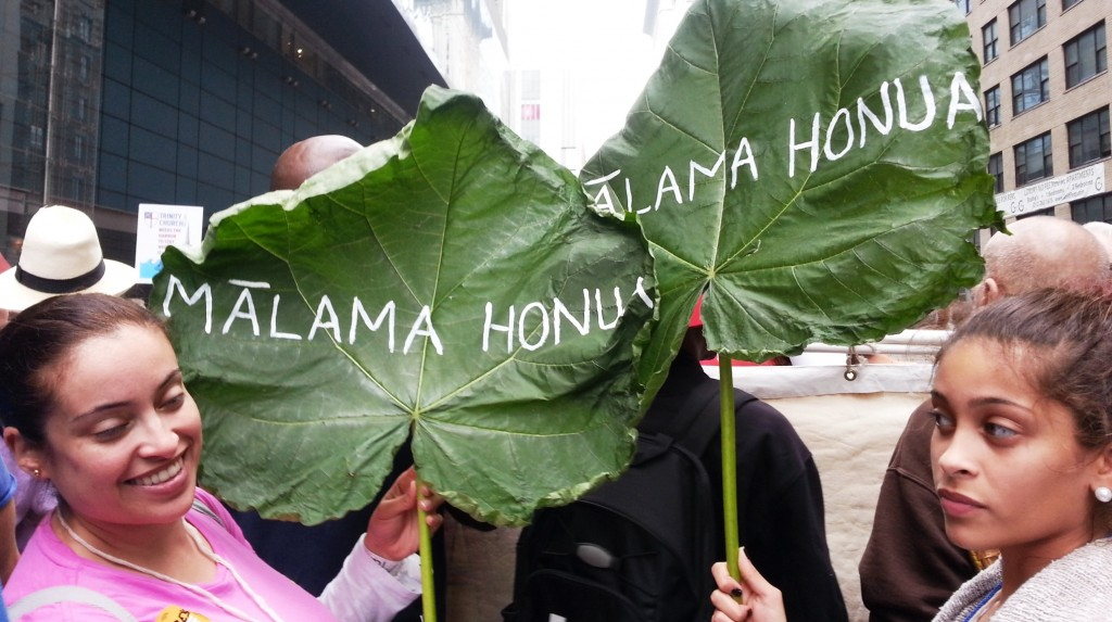 hawaiian leaves